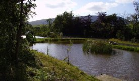 View from one of the lakes at Boothman Park with Pendle Hill in the background
